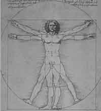 Drawing of the Vitruvian man, by Leonardo Da Vinci